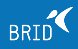 BRID LOGO copia